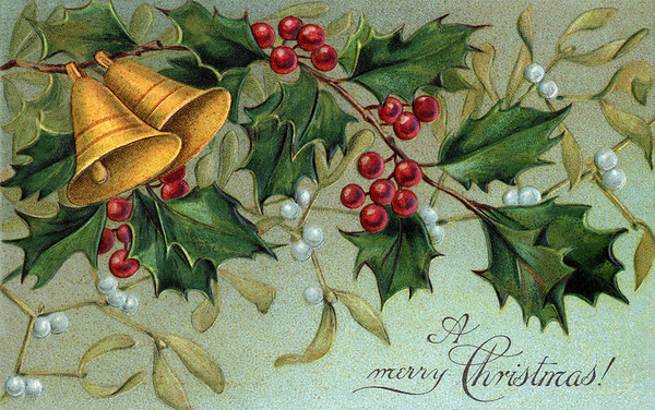 Christmas bells, holly, and mistletoe - a circa 1910 vintage Christmas illustration. The